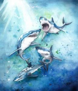 Sharks by Annie Dalton