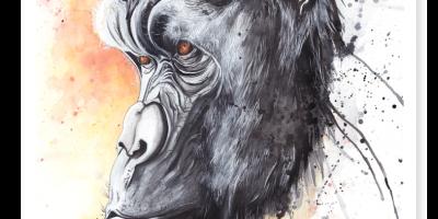 Gorilla by Annie Dalton